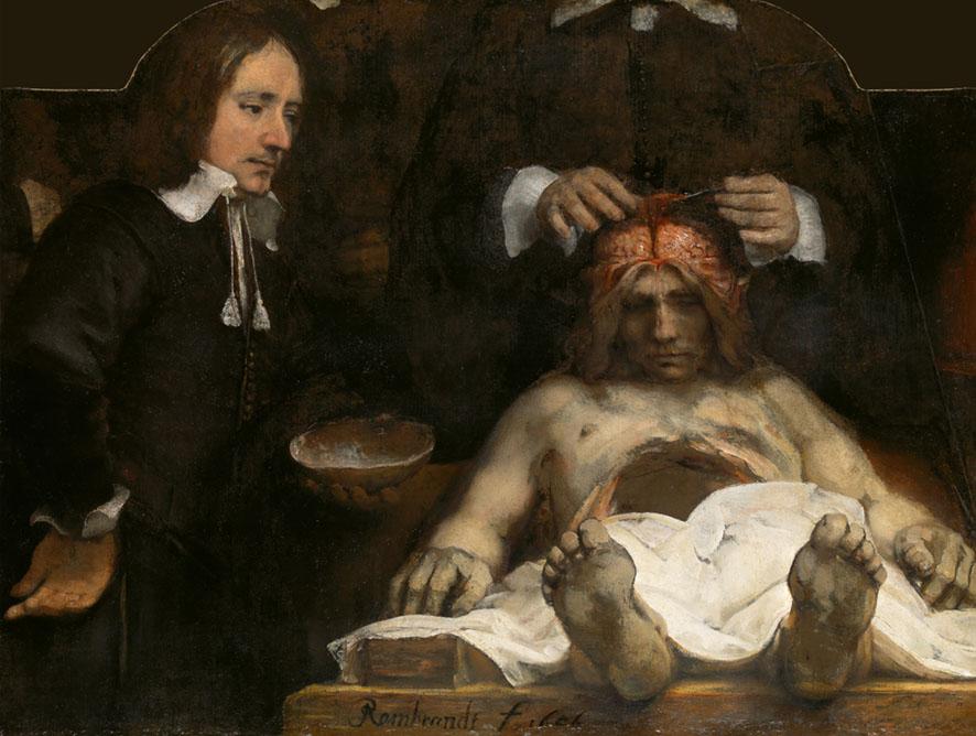 Imagen de un hombre diseccionándo un cerebro