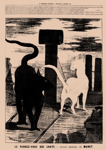 El encuentro de los gatos
