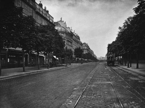 Charles Marville. Boulevard Saint-Germain, 1875-1877