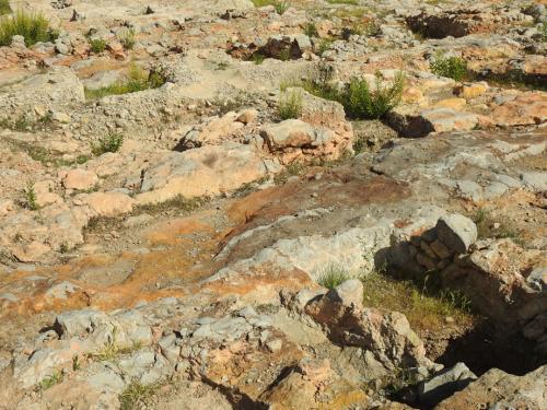 Detalle del yacimiento en el sector norte de la necrópolis