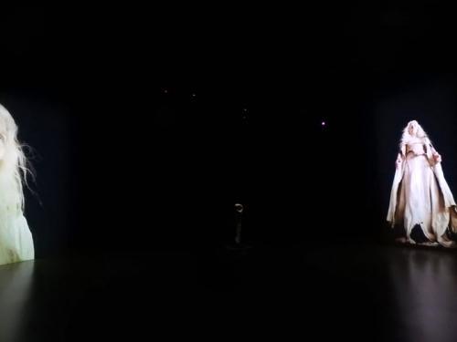 Proyección simultánea en las dos pantallas de la vídeo-instalación