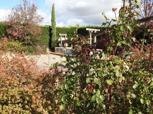Vista del jardín. Al fondo, prensa de viga