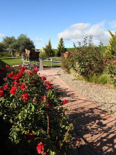 Vista del jardín del Museo del Vino Pagos del Rey