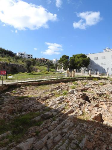 Vista del yacimiento de Puig des Molins
